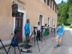Fotograferen in de Vogezen in September