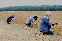 fotograferen met je smartphone in mei op camping la Jonquille
