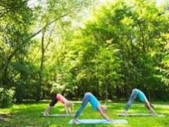 Yoga week op Le Douvet