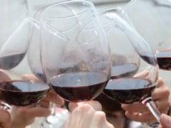 Boeiende WIJNTRIP naar de Bordeauxstreek